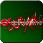 Auricolari bluetooth cellular line