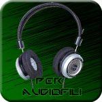 cuffie da audiofilo